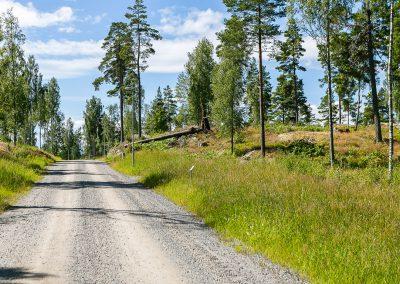 44-2016-07-07_hammarterassen_askersund